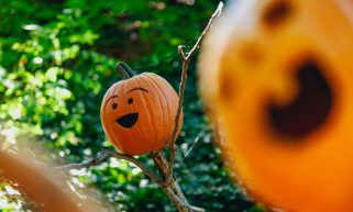 Sustainable Hallowe'en