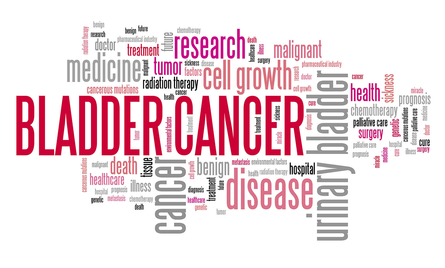 Bladder cancer word cloud